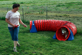 Karina teaching Penny the tunnel