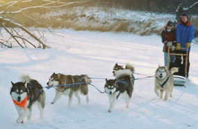 Procyon leading the team on a run down the Crow River, 2005